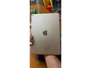 Ipad air 2 16G Wifi Gold