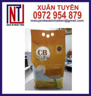 Bao bì gạo 5kg ghép màng PA/PE