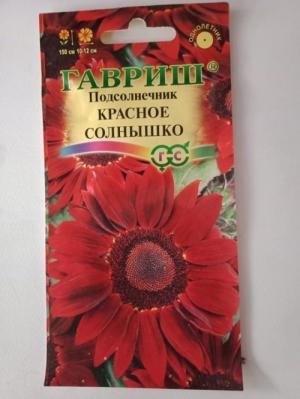 Hạt giống hoa hướng dương đỏ nhập khẩu