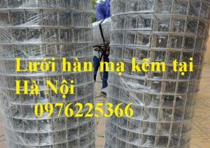 Lưới thép mạ kẽm ô 25x25mm,30x30mm, 50x50mm, 100x100mm