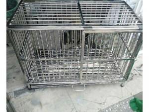 Chuồng chó inox 50 -100-60