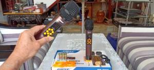 Bộ Micro không dây Bose BS-992 chống hú rít tuyệt đối
