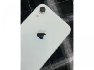 Iphone Xr quốc tế 64gb trắng đẹp 99 zinall nguyên áp