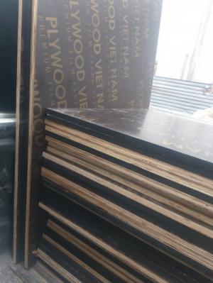 Ván ép phủ phim giá rẻ tại Hà Nội