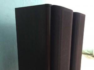 Loa Diatone DS-1000Z, 30kg/loa, 180w