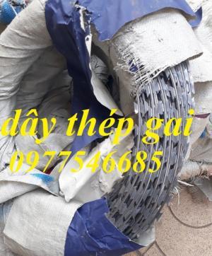 2020-05-26 16:18:43  4  Dây thép gai - Dây thép gai hình dao làm hàng rào 30,000