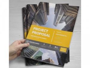 Thiết kế Profile Công ty/ Cá nhân - Brochure/ Catalogue