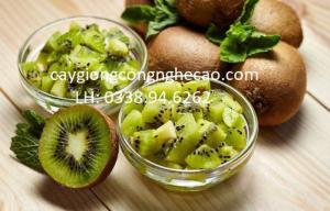 Cung cấp cây giống: Cây Kiwi