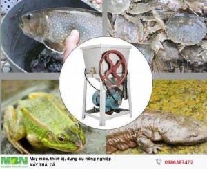 Máy thái cá