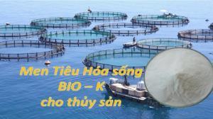 Men tiêu hóa BioK cho thủy sản