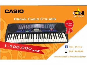Organ Casio CTK495