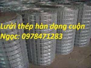 Chuyên cung cấp lưới thép hàn D1,D2,D3,D4 hàng có sẵn giá rẻ toàn quốc