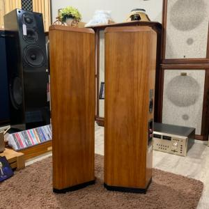 Loa TANNOY D300 American Cherry