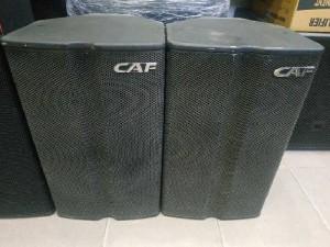 Loa CAF W-12P bass tress italy