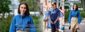 Pantone màu 2020, pantone màu classic blue, pantone tpx