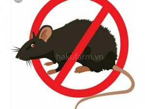 Máy đuổi chuột dùng pin năng lượng