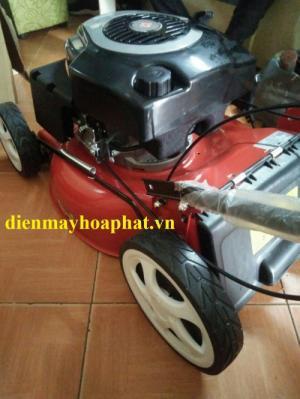 Máy cắt cỏ tự hành đẩy tay chạy xăng DICH DCM1668 cắt sân gold, sân bóng.