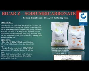 Sodium bicarbonate - soda tăng kiềm
