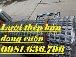 Lưới thép hàn mạ kẽm dạng cuộn dây 2,dây 3 giá rẻ nhất.