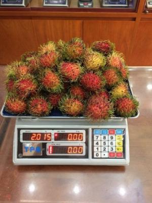 Cân tính tiền UPA-Q 30kg, cân thịt heo, trái cây, thực phẩm