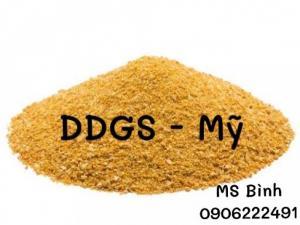 DDGS - BÃ RƯỢU LÊN MEN