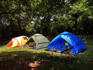 Lều dã ngoại cắm trại 2 lớp chống thấm 5-6 người