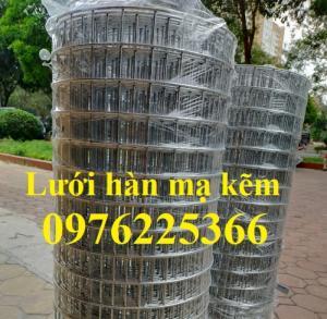 Lưới thép mạ kẽm, lưới hàn mạ kẽm D2, D3 a50, D4 a50 sản xuất theo yêu cầu