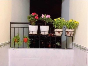 3 giỏ sắt treo chậu hoa ban công-miễn phí giao trung tâm