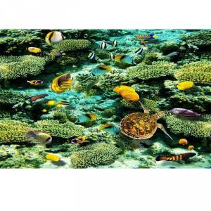 Tranh gạch san hô