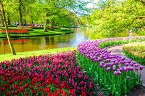 Tranh gạch phong cảnh vườn hoa 3D