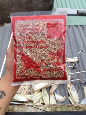 Ngũ cốc - hạt trộn cho chim cu gáy