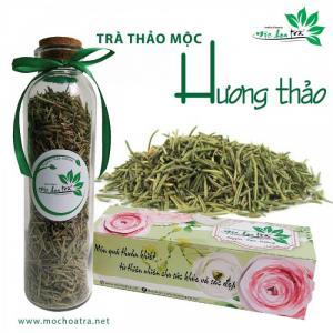 Trà Hương thảo/Rosemary - Mộc Hoa Trà