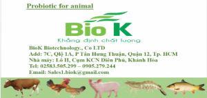 Tìm nhà phân phối, đại lý men vi sinh nguyên liệu biok