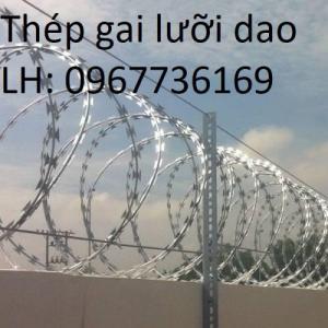 Hàng rào thép gai - Thép gai hình dao