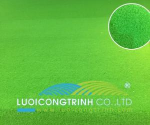 Cỏ Golf Green Màu Xanh Lá Mạ Cực Đẹp