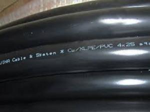 Dây cáp điện DSTA 4x2.5