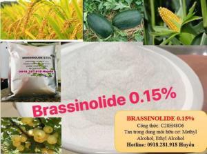 BRASSINOLIDE 0.15% - TĂNG NĂNG SUẤT CÂY TRỒNG