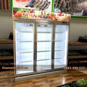 Tủ mát 3 cánh trưng bày hoa quả, thực phẩm (mẫu mới nhất 2020)