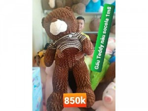 Gấu Teddy socola 1m8 đứng 1m6