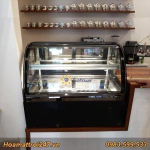 Tủ trưng bay bánh kem mini kính cong