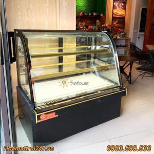 Tủ trưng bày bánh kem 3 tầng kính cong 1m2