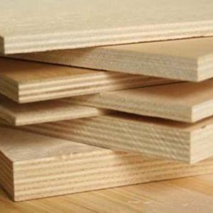 Ván gỗ dán mặt Bạch dương (Birch) dùng cho nội thất.