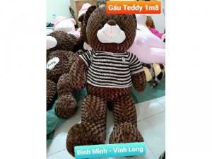 Gấu Teddy 1m8 giá rẻ