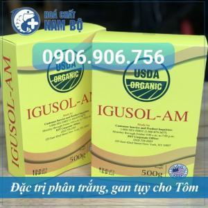 IGUSOL-AM - Phòng ngừa và điều trị hiệu quả BỆNH PHÂN TRẮNG cho Tôm