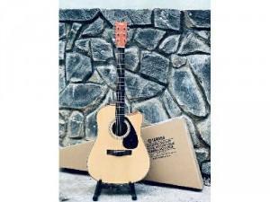 Guitar biên hòa