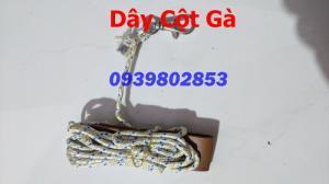 Dây Cột Gà