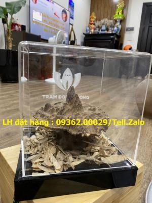 Sản phẩm hộp chụp mica trưng bày sản phẩm mẫu – Sản xuất theo yêu cầu