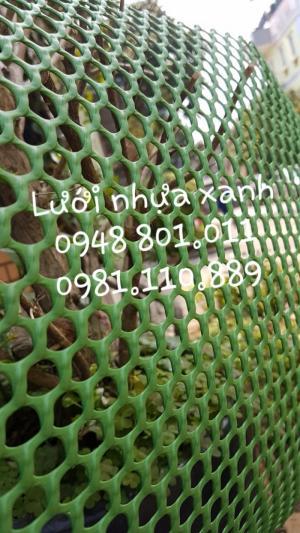 Lưới nhựa cứng lót sàn nuôi gà