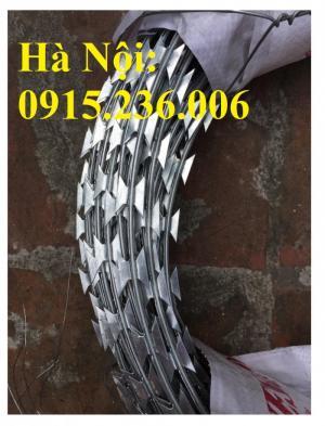 Chuyên cung cấp dây thép gai hình dao vòng 35, 45, 60, 80 giá tốt