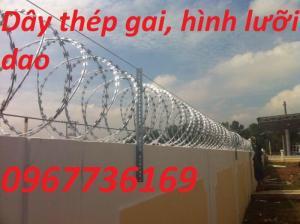 Hàng rào lưỡi dao, hàng rào kẽm gai